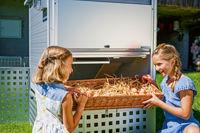 Das ganz persönliche Frühstücksei - Ein moderner Hühnerstall für den eigenen Garten macht es möglich