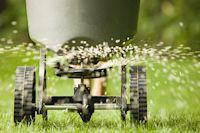 Macht der Rasen schlapp, ist der Griff zu WUXAL green Rasendünger die richtige Wahl.
